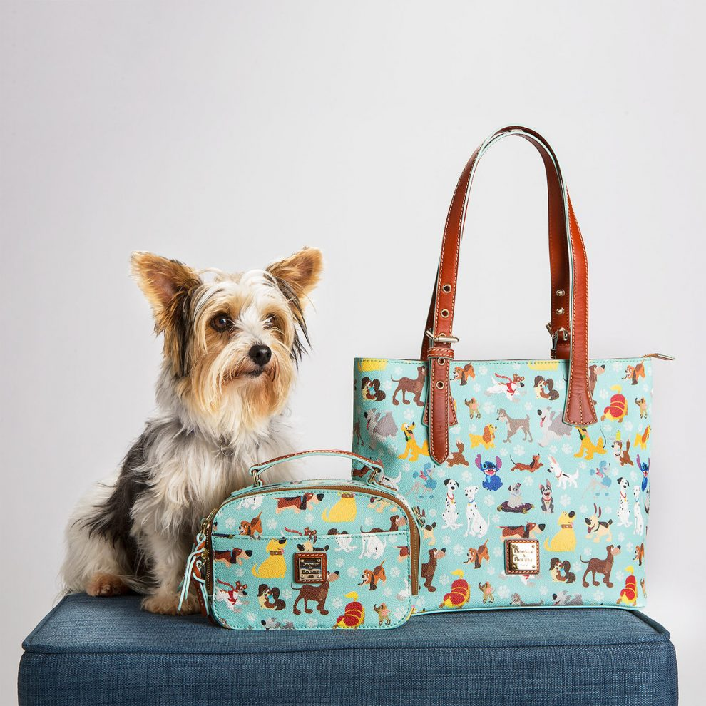 Pictures Of Dogs In Purses