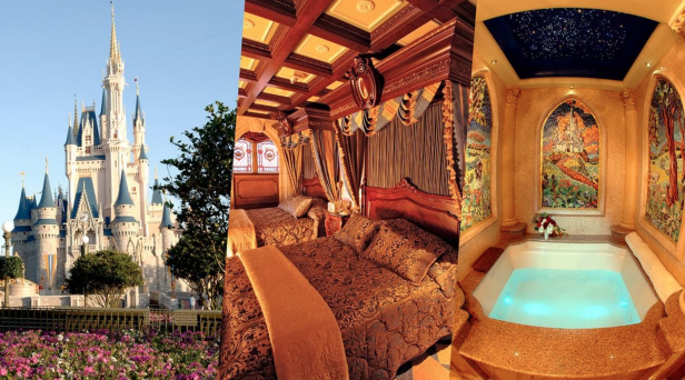 Another Chance to Spend the Night in Cinderella's Castle ...