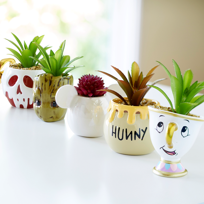 Disney Succulent Pots