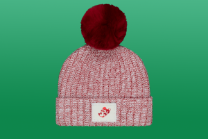 Holiday Minnie Mouse Beanie