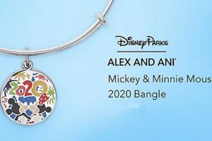 Disney 2020 Bangle