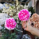 Floral Ears