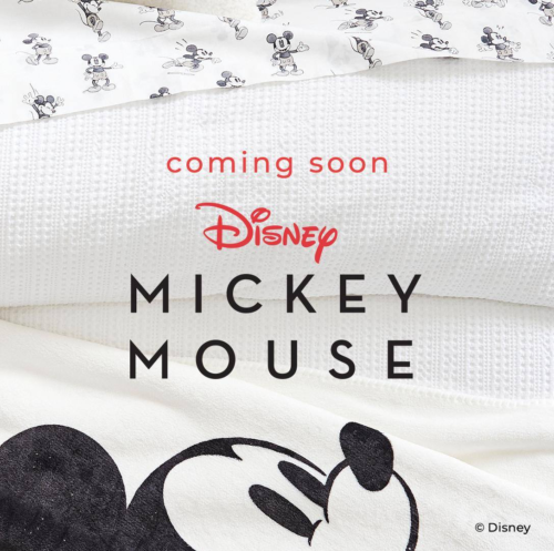 Mickey Mouse Pottery Barn Collection